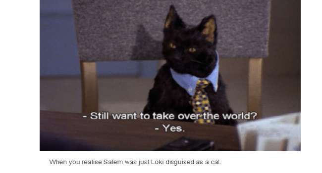 quotes sabrina the teenage witch tumblr salem the cat funny cats Cats funny - 5542405