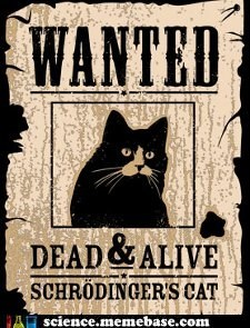 alive dead Memes physics poster shrodingers-cat - 5544422144