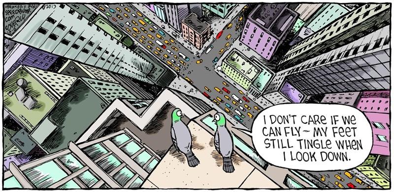 funny comics animal comics animsl cartoon cartoons animals web comics - 5544453