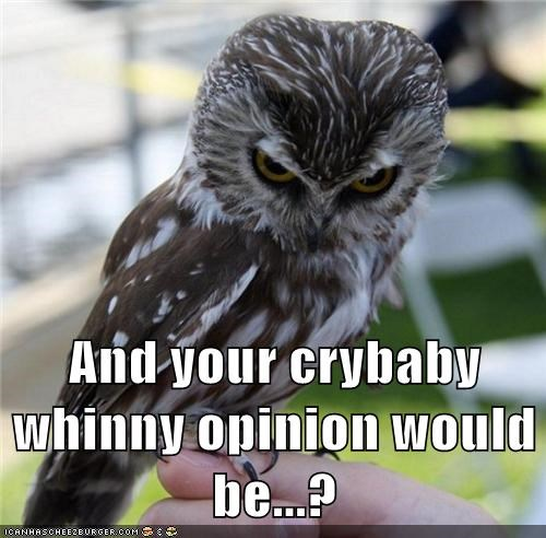 best of the week Hall of Fame opinion Owl stfu - 5544914944