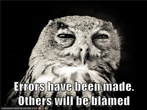 animals,blame,errors,i blame you,Owl