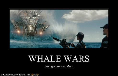 WHALE WARS Just got serius, Man.