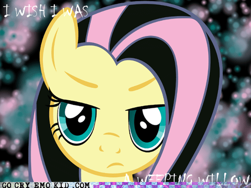 brony emolulz MLP my little pony - 5546653952