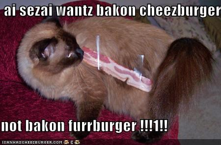 Cheezburger Image 554728192