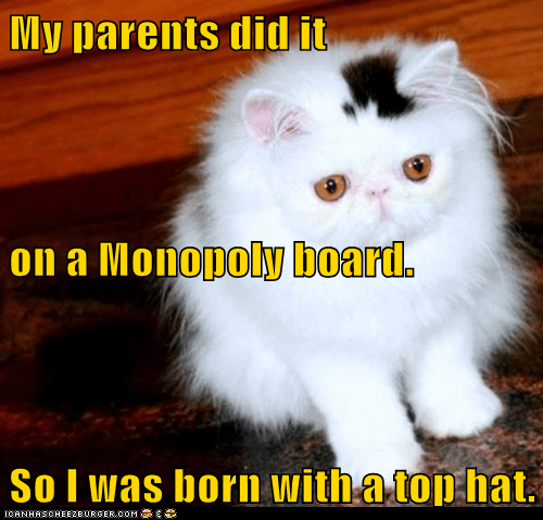 best of the week board caption captioned cat conception explanation mark monopoly spot top hat