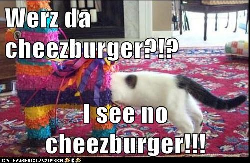 Cheezburger Image 5548208896