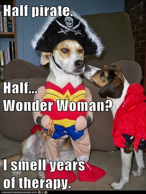 beagle,costume,identity crisis,Pirate,therapy,wonder woman