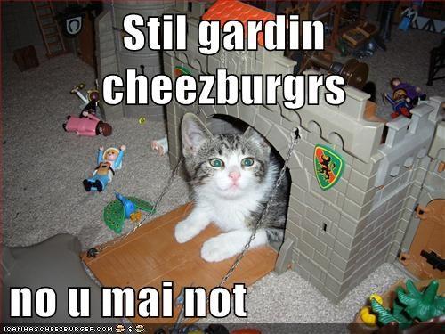 Cheezburger Image 5548273408