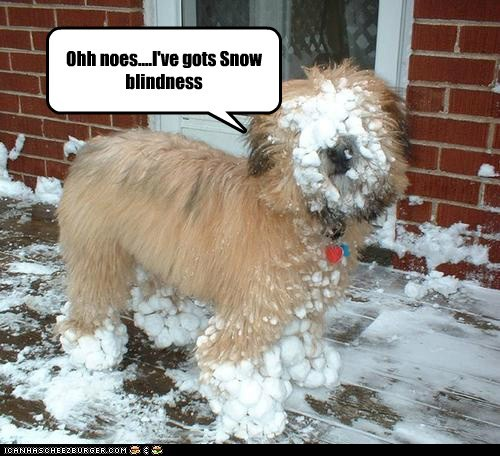 Ohh noes....I've gots Snow blindness