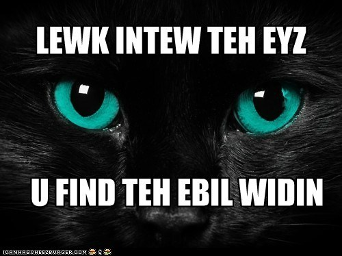 black cat cat cats-eyes evil eyes I Can Has Cheezburger - 5549507840