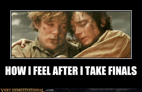hilarious hobbits Lord of the Rings wtf