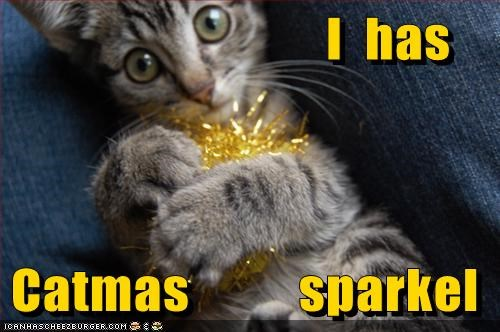 ball caption captioned cat christmas do want i has kitten shiny Sparkle tinsel toy