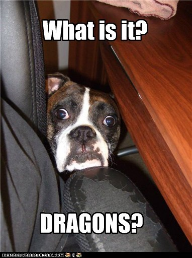 boxer,dragons,oh no,scared,shocked,uh oh,what is it,what,worried
