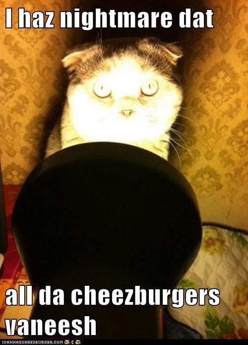 Cheezburger Image 5550201088