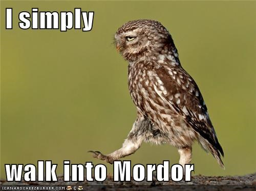 animals Badass BAMF best of the week Hall of Fame mordor Owl walk walk into mordor - 5552429824
