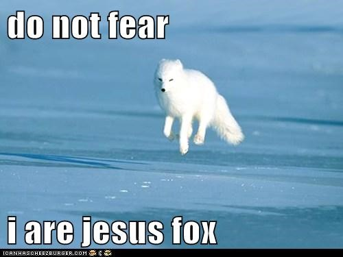 am,arctic fox,caption,captioned,do,fear,floating,flying,fox,I,jesus,not