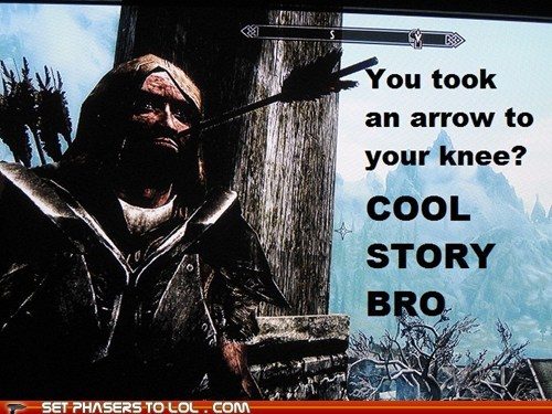 arrow in the knee,cool story bro,dovahkiin,Skyrim