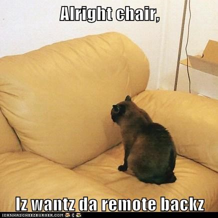 alright back caption captioned cat chair demand do want remote return - 5552889600