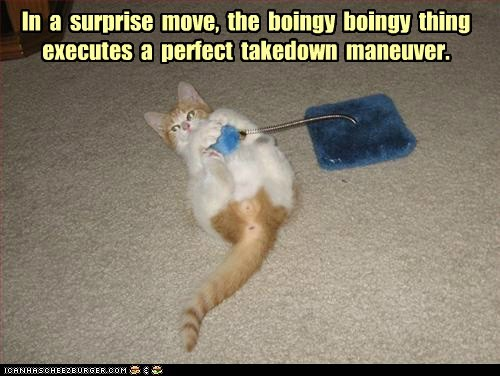 In a surprise move, the boingy boingy thing executes a perfect takedown maneuver.