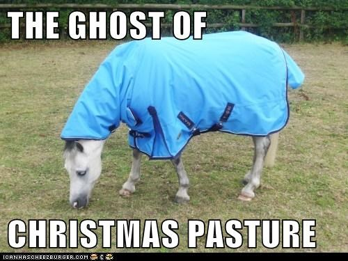 THE GHOST OF CHRISTMAS PASTURE