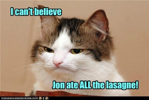 cat garfield I Can Has Cheezburger mad - 5554027776