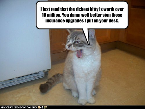 I just read that the richest kitty is worth over 10 million. You damn well better sign those insurance upgrades I put on your desk.