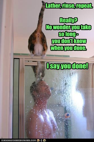 cat human I Can Has Cheezburger Lather repeat rinse shower stop youre-done - 5554659072