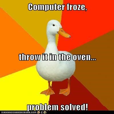 computers,doing it wrong,ducks,dumb,froze,oven,Technologically Impaired Duck,technology