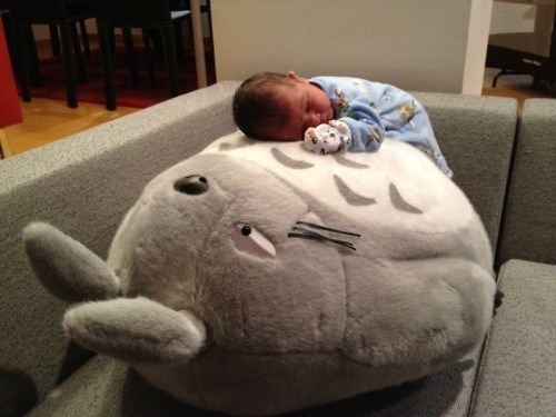 adorable,baby,cute,dawww,naughty or nice,Parenting Fail,Pillow,sleeping,totoro
