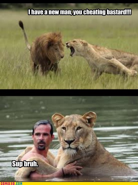 animals,cheating,circle of life,lion,lioness,sup