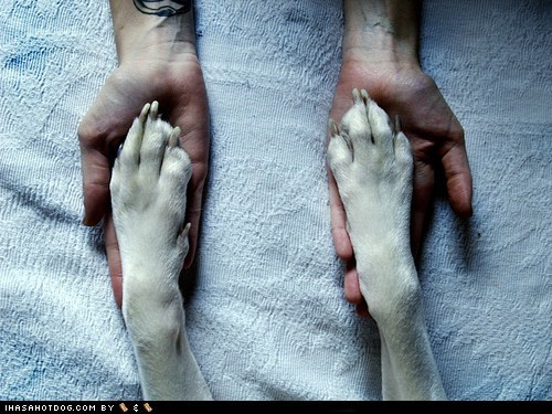 friends friendship hands human love toes whatbreed - 5558168320