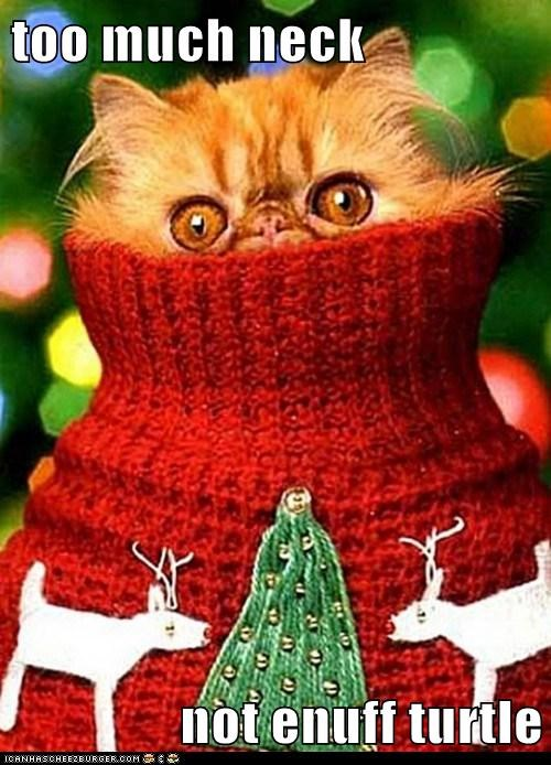 caption captioned cat christmas do not want enough neck not too much turtle turtleneck