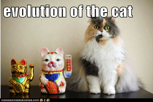 caption,captioned,cat,evolution,maneki neko,statue,statues