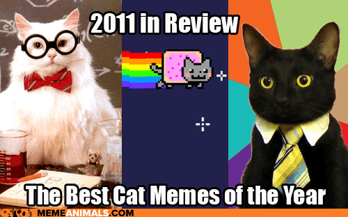 2011 in review Business Cat chemistry cat gallery Happy Kitten Hipster Kitty Nyan Cat Rage Comics the best of 2011 the most interesting man in the world Y U No Guy - 5558460416