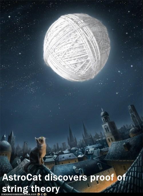 cat genius I Can Has Cheezburger moon String Theory - 5558814976