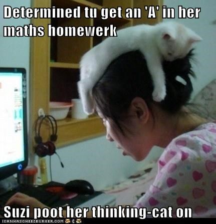Determined tu get an 'A' in her maths homewerk Suzi poot her thinking-cat on