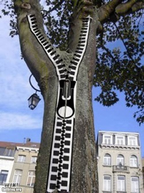 clever graffiti hacked irl tree zipper - 5559340032