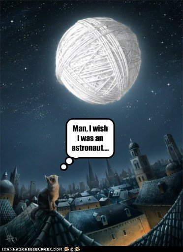 astronaut ball caption captioned cat do want dreaming man moon painting roof standing was wish yarn