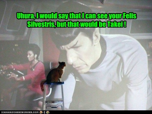 Uhura, I would say that I can see your Felis Silvestris, but that would be Takei !