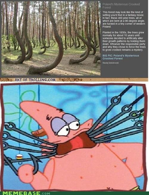 hooks,Memes,patrick,SpongeBob SquarePants,trees