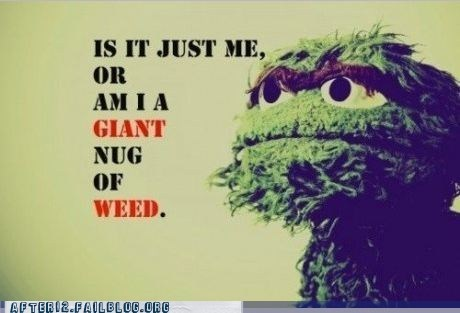 drugs,epiphany,Hall of Fame,oscar the grouch,pot,Sesame Street