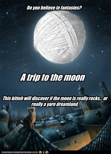 Do you believe in fantasies? A trip to the moon This kitteh will discover if the moon is really rocks... or really a yarn dreamland.