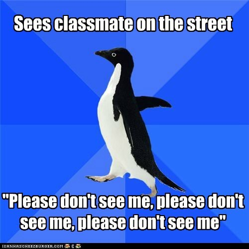 avoid Awkward classmates in public penguins please socially awkward penguin - 5562555648