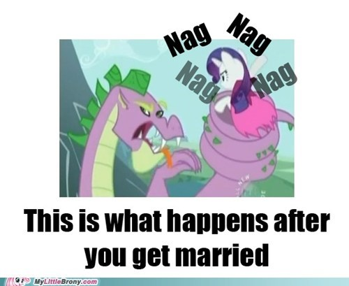 fire ruby marriage nag ponies rarity spike - 5563075328