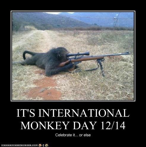 IT'S INTERNATIONAL MONKEY DAY 12/14 Celebrate it... or else