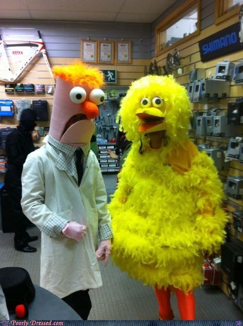 big bird cosplay muppets taller on tv