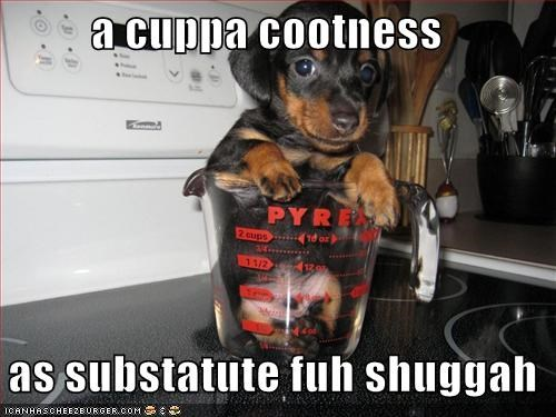 a cuppa cootness    as substatute fuh shuggah