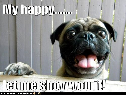 awesome happy happy dog pug smile smiling tongue tongue out - 5564120576