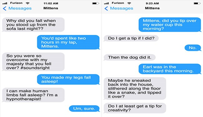 mittens lolcats texts messages cute funny cats Cats funny - 5564165