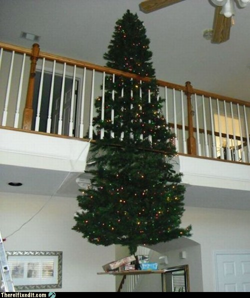christmas,christmas trees,not a kludge